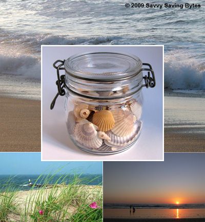 shells-jar-capecodbeaches9