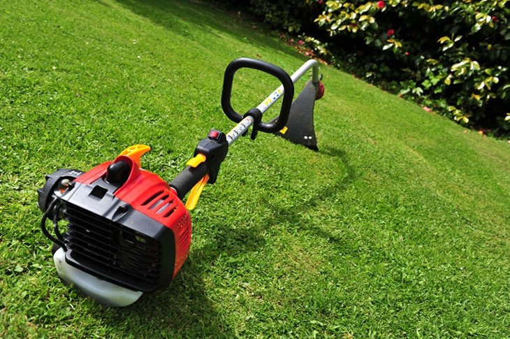 best petrol strimmer review