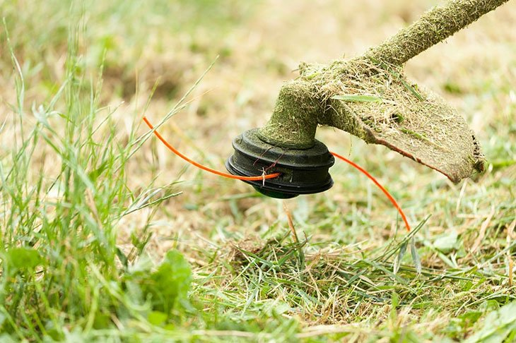 echo vs stihl hedge trimmer